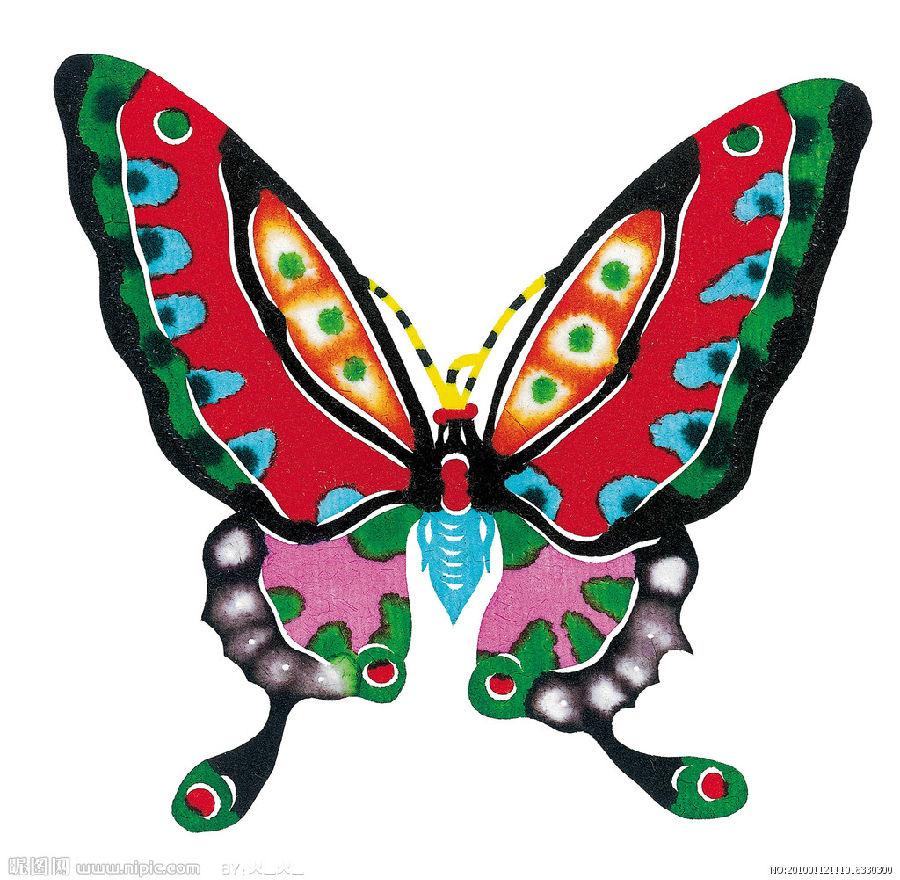 立体构成-蝴蝶落我家